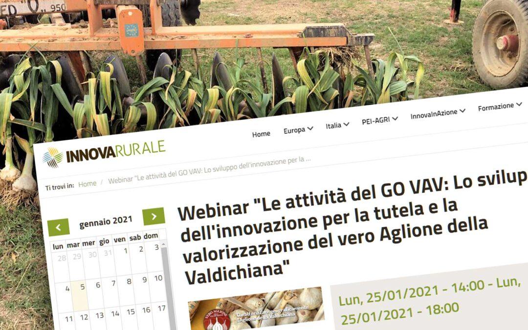 Aglione. Il webinar del 25 gennaio 2021 sul sito InnovaRurale