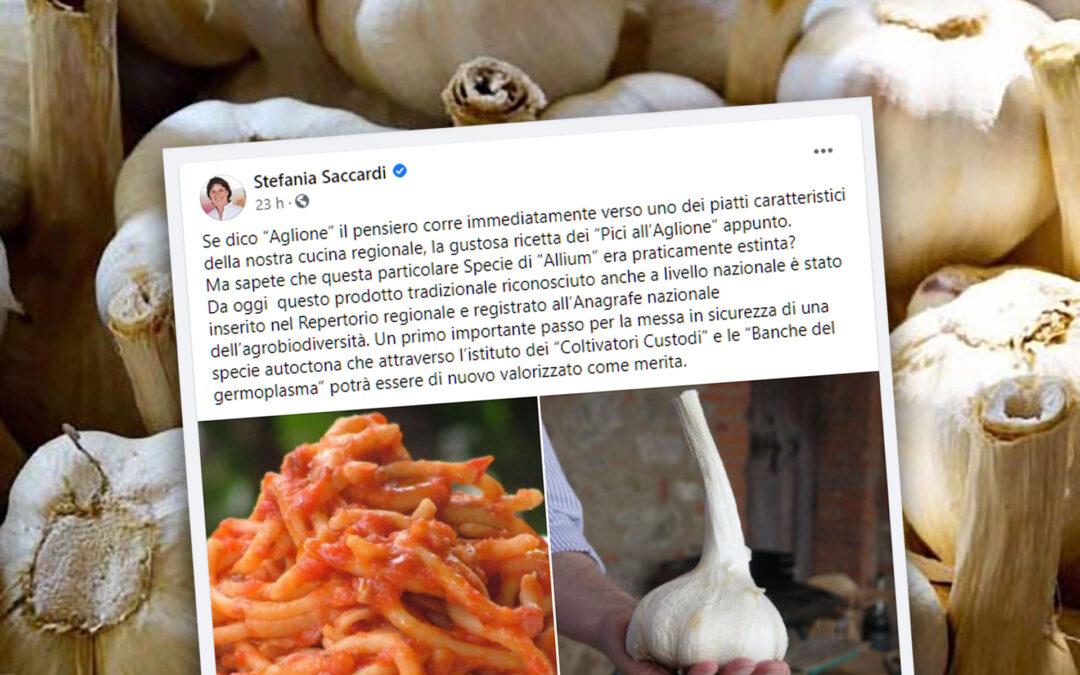 L'aglione nel registro dell'agrobiodiversità. Il post di Stefania Saccardi